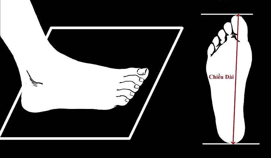 Tiến hành đo bàn chân