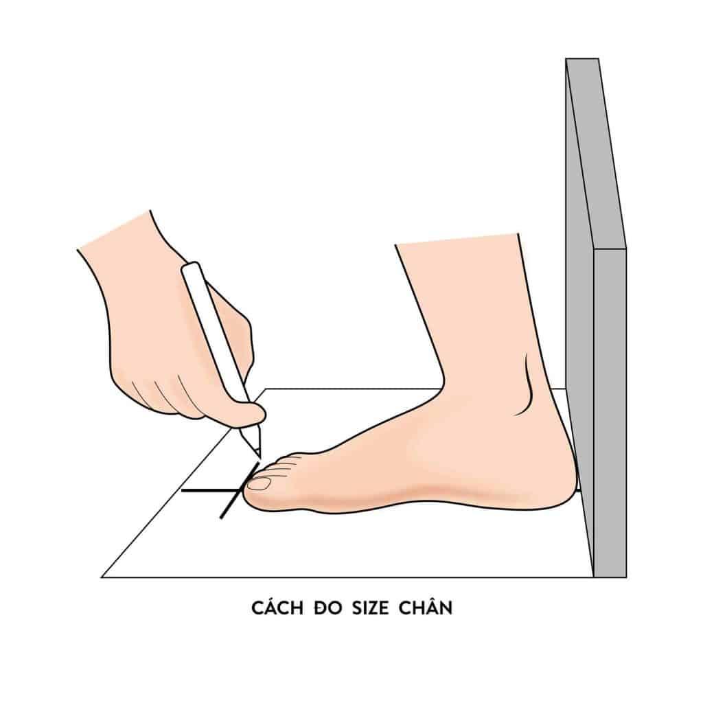 Đánh dấu điểm đầu và điểm cuối rồi dùng thước đo chiều dài bàn chân