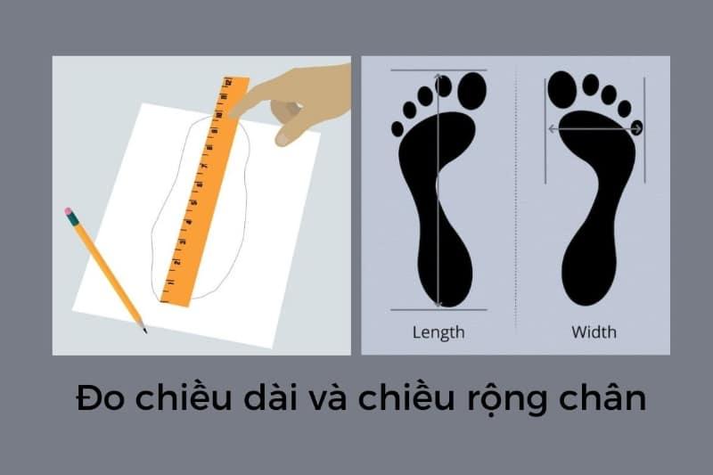 Xác định size giày bằng cách đo chiều dài và chiều rộng của bàn chân